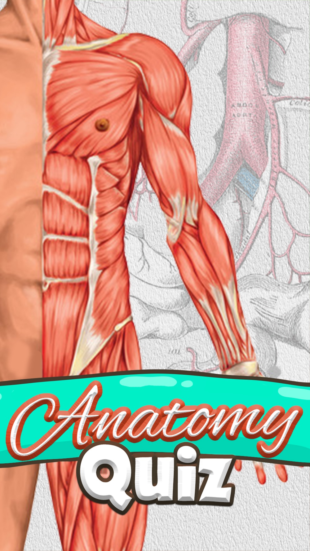 Anatomy Quiz – Science Pro Brain Education Game cheat codes