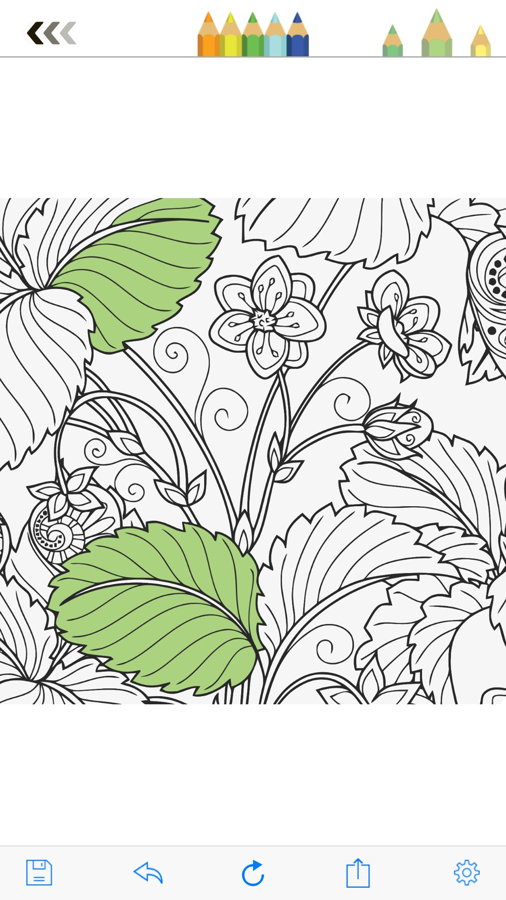 Hack tool for Colorty: Best Coloring Book for Adults